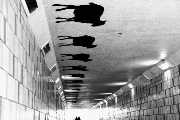 A black and white photo looking through a tiled underpass with a row of black sheep on the ceiling. A couple of pedestrians in the far distant exiting the sunlit tunnel entrance