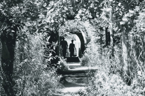 A black and white picture of a couple in the distant walking through and emerging out of a tunnel; their profile in shadow. The picture is framed by overgrown foliage to the footbath which helps to complement the shot