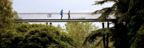 two visitors walking across a high rise bridge through the woodlands at Westonbirt Arboretum