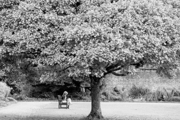 a black and white image of a solitary figure under the canopy of a well established tree in the grounds of Tredegar House