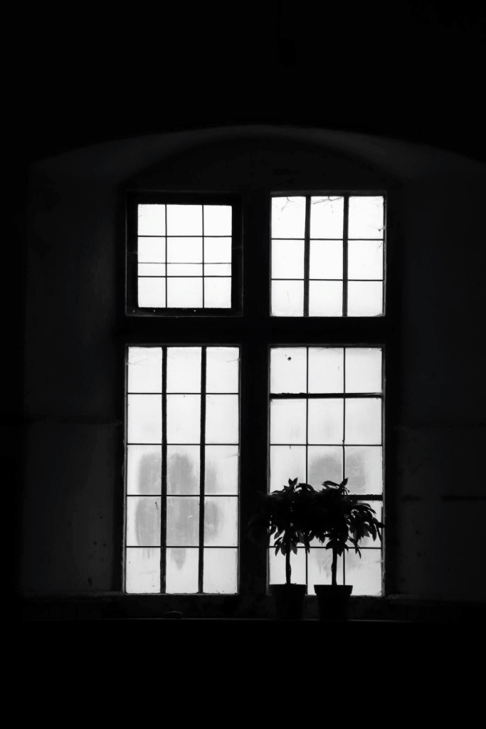a black and white image of light emerging through four windows at the end of the stables at Tredegar House