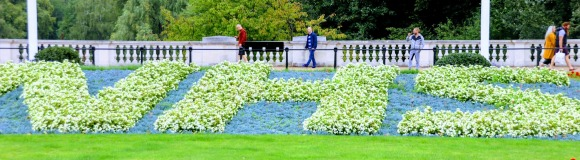 a floral display shaped in the NHS logo in the gardens opposite Buckingham Palace