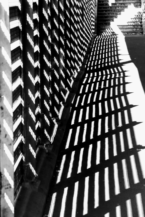 a black and white image capturing the sun shining through a slatted metal fence which casts an intense shadown on the ground