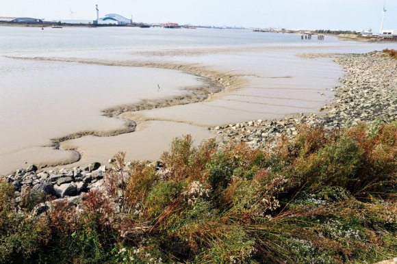 a meandering creek through the mudbanks of the tidal Thames whilst the tide is out. The Kent shoreline is just in view