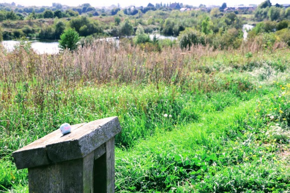 a view overlooking one of the lakes with a seat in the foreground. Upon the seat is a painted stone with the words 'Psalms 8'