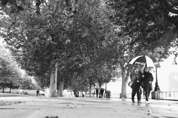 black and white image. long shot taken from ground level looking through the avenue of trees along  the Queen's Walk. It's raining so few people about, but a couple walking on the right hand side holding a black and white 'PING' golfing umbrella looking at the camera